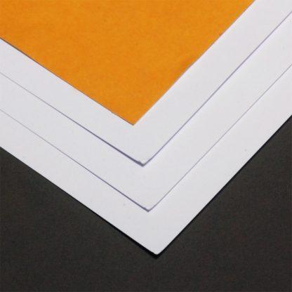 adhesive backed card